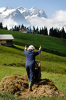 Emptying the wheelbarrow, after mucking out the pigs...Cowherd and cheesemaker spends 100 days in the summer, high up in the mountains, tending cows and pigs and making cheese at Balisalp and Käserstatt near Meiringen, Switzerland.