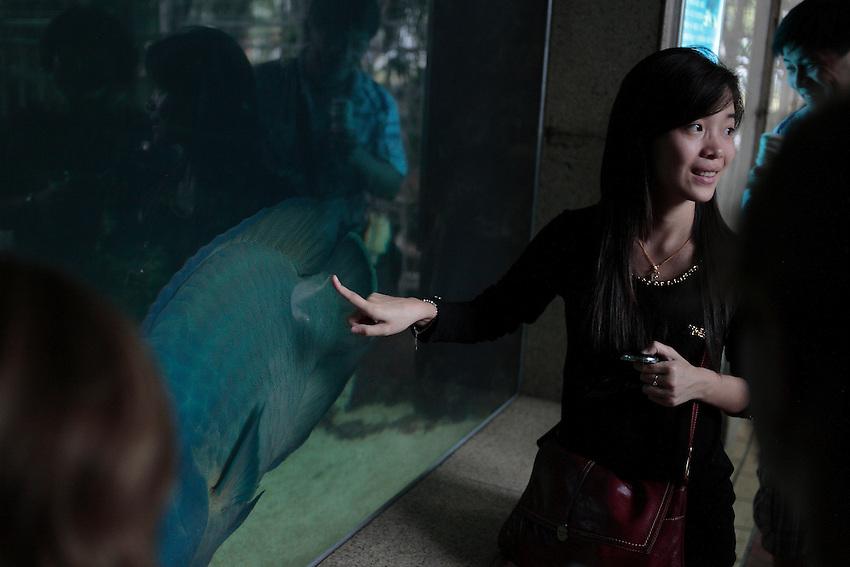 Des touristes chinois visitent le centre océanographique de Gulangyu.