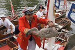 Swan Upping. The River Thames near Windsor Berkshire England  The Queens Swan Master David Barber passes a signet to a colleague to be weighed measured and ringed.