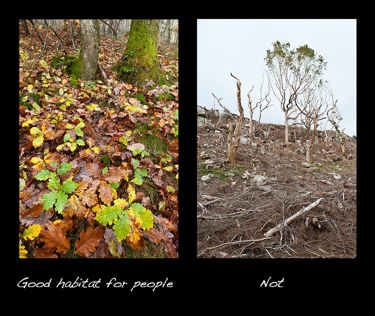 Good habitat for people - not 2, poster