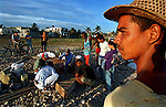 8/1994-Al Diaz/Miami Herald--In 1994 Cuban balseros turned the tiny fishing village of Cojimar into a major point of embarkation for thousands seeking a better life. Here, Cubans build a raft in Cojimar at dawn.