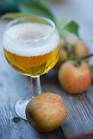 Europe/France/Normandie/Basse-Normandie/50/Saint-Jean-des-Champs: Ferme de l´Hermitière - Cidre et pommes  // Europe,France,Normandie,Basse-Normandie,Saint-Jean-des-Champs: Cider and apples