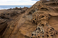 A near-magical landscape is created by a mildly rare geological process.  Tafoni formations at Bean Hollow State Beach south of San Francisco on the California coast.