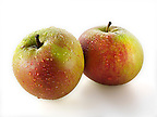 Cox apple