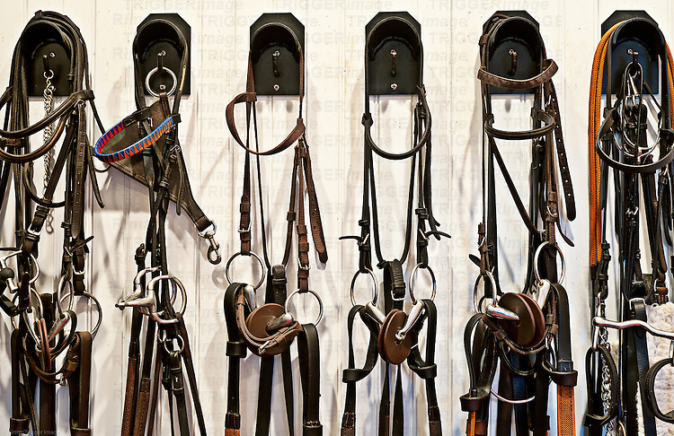 Riding gear in a stable tac room.