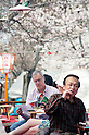 April 10, 2012, Kyoto, Japan - A tourist reads a book of Kyoto, while eating and drinking. Hanami is one of the oldest traditions in Japan, which is to admire the cherry blossoms. Last year this tradition was interrupted in the northeast of Japan, because of the big earthquake and tsunami of March 11, 2011.