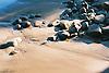 stones at the beach<br /> <br /> piedras en la playa<br /> <br /> Steine am Strand<br /> <br /> 3360 x 2240 px<br /> 150 dpi: 57,05 x 38,08 cm<br /> 300 dpi: 28,52 x 19,04 cm