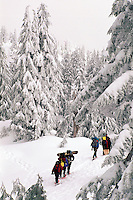 A Group of People snowshoeing in Mount Seymour Provincial Park, in the Coast Mountains, North Vancouver, British Columbia, Canada