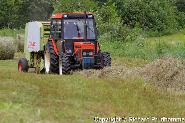 Farm tractor bailing  hay in  field