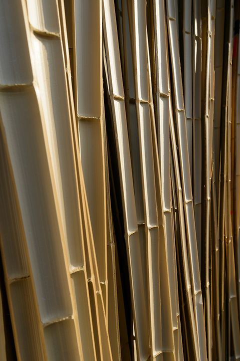 Bamboo used in bow making in the yard of Yokoyama Reimei Bowmakers, Miyakonojo, Miyazaki Prefecture, Japan, December 23, 2016. A handful of bowyers from the Kyushu city of Miyakonojo make over 90% of all the bows used in traditional Japanese archery. The bows are made from laminated bamboo and haze wood in process that consists of over 200 individual tasks. At over two meters from tip to tip the bows the longest used in the world.