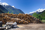 Winter wood stacked against background of green forest, snow capped mountains and clear blue sky.  Imst district, Tyrol, Tirol.Austria.