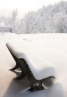 A pine bench built by Helene Roux's husband is cloaked in a blanket of fresh snow