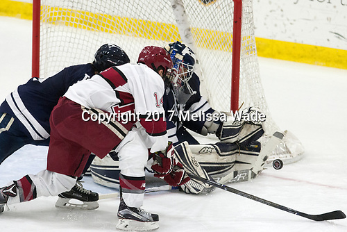 Alexander Kerfoot (Harvard - 14), Patrick Spano (Yale - 30) - The Harvard University Crimson tied the visiting Yale University Bulldogs 1-1 on Saturday, January 21, 2017, at the Bright-Landry Hockey Center in Boston, Massachusetts.