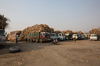 Cambodia - Kampong Speu Province - Trucks carrying sugarcane waiting in line to unload the cane at the Phnom Penh Sugar Factory, one of the largest in Cambodia. The factory processes 12,000 to 14,000 tons of cane every day and employs 1000 people. It works 24/7 and trucks deliver the cane from 7 am until midnight.