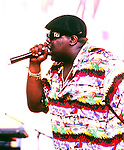 Notorious Big Photo Archive