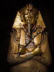 Tut DNA, MM7864, King Tutankhamun, Egypt, Egyptian Museum, Gold, Sarcophagus, New Kingdom, Valley of the Kings, TUT, King Tut