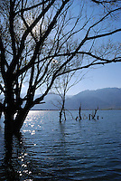 Nature riverside landscape fine art photography of Lijiang deep blue water surrounded by trees in silhouette effect. China landscape photography by Paul Chong.