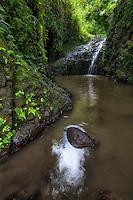 Maunawili Falls in Windward O'ahu.