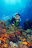 Scuba Diver on Life's Reef<br />