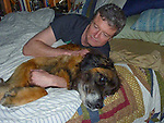Murphy Friel, a Leonberger dog