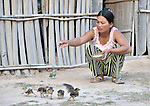 Korb Thouen feeds her chickens in Thnort Rorleung, a village in the Kampot region of Cambodia. She received five hens and a rooster from CCAF/MRDF to get started with chicken raising.