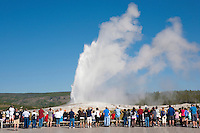 Visitors watch Old Faithful Geyser from the boardwalk.  Old Faithful must be the most watched geyser in the park, making the crowds as interesting as the geyser.  Yellowstone National Park, the first National Park in the world, still enthrals over three million visitors a year with it's geothermal features,wildlife,  rugged mountains, deep canyons and stunning ecosystem.