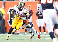 DeAngelo Williams #34 of the Pittsburgh Steelers carries the ball against the Cincinnati Bengals during the game at Paul Brown Stadium on December 12, 2015 in Cincinnati, Ohio. (Photo by Jared Wickerham/DKPittsburghSports)