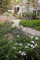 Gravel path leading to patio in drought tolerant California native plant garden