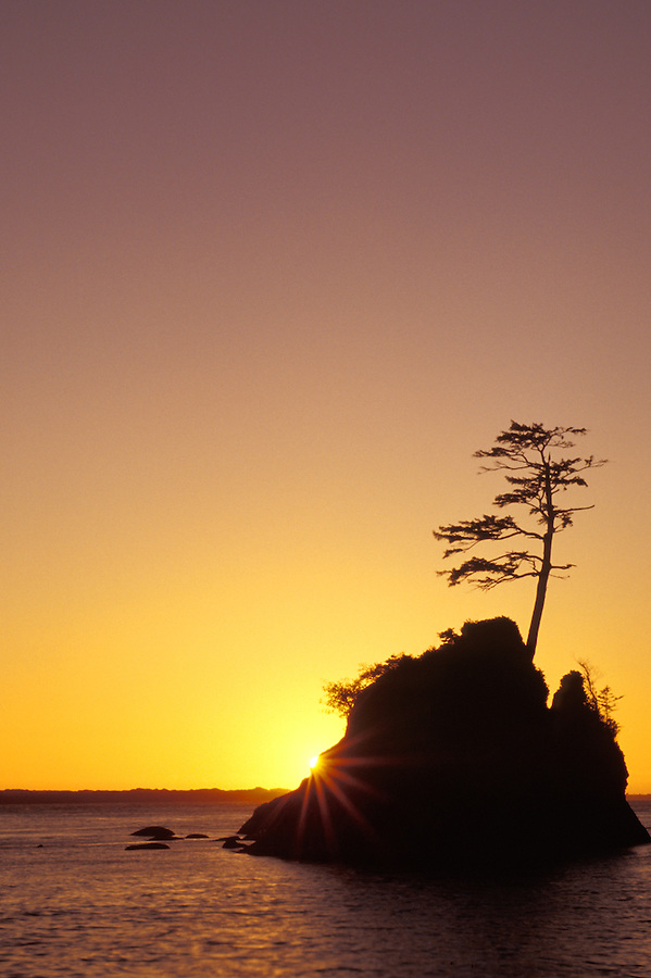 Sea stack in Tillamook Bay silhouetted against sunset, Garibaldi, Oregon