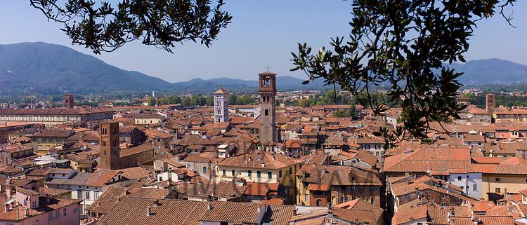View from Torre Guinigi tower showing L to R Palazzo Ducale, Chiesa di San Cristoforo, Chiesa di San Michele, Torre Del Ore, Lucca, Italy