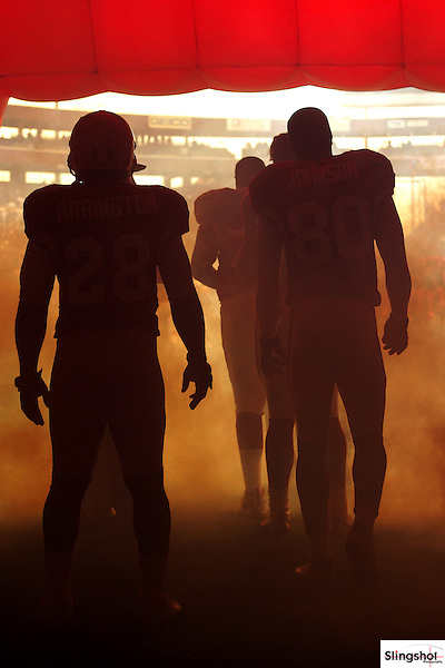 Arizona Cardinals players take the field during the 2006  NFL season.
