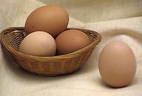 Uova. Eggs