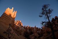 """The sun rises over the """"hoodoos"""" of Bryce Canyon National Park in southern Utah. The odd limestone formations erode out of the cliffs in the area, and gain their red, orange and yellow colors from oxidizing minerals in the stone."""