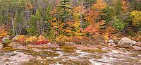 Autumn along the Swift River