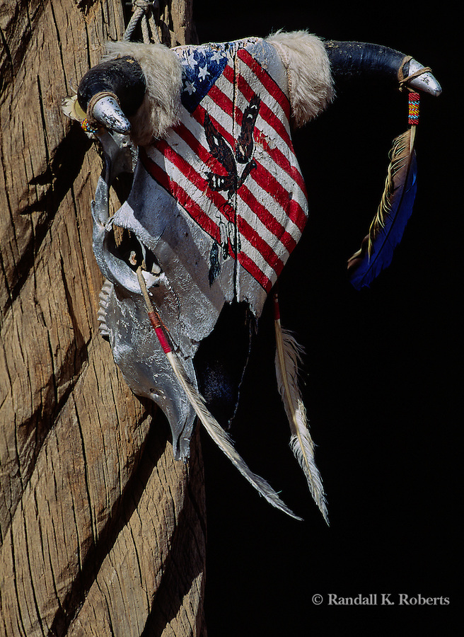 Painted cow skull, New Mexico