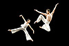 Cloud Gate Dance Theatre of Taiwan <br />