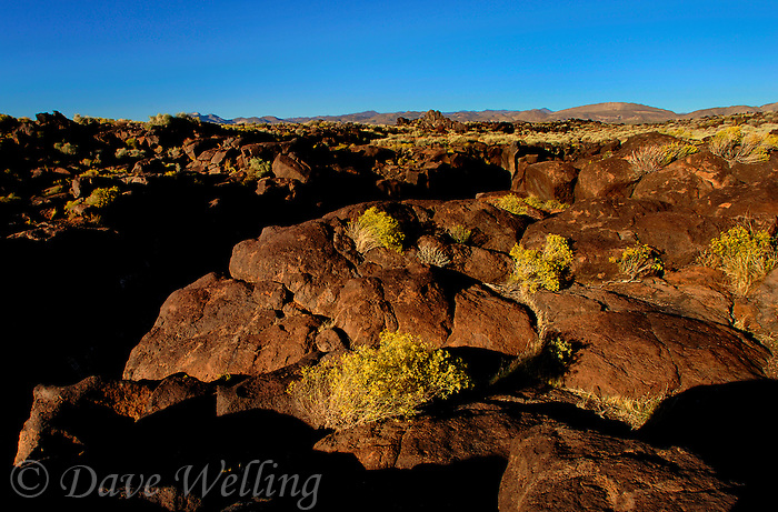730850334 lava rocks and formations looking east over fossil falls blm protected lands inyo county california