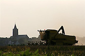 Grain harvest - wheat - in Sexbierum, the North West part of Friesland (North of the Netherlands).<br />