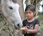 A girl feeds her horse in Victoria 20 de enero, a village of former Guatemalan refugees in Mexico who returned home as a group in 1993, while the country's bloody civil war still raged.