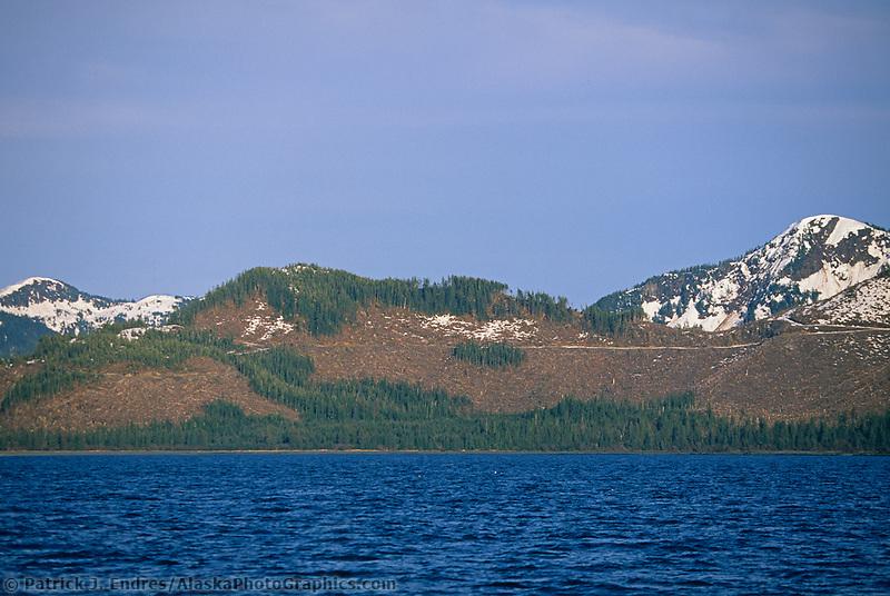 Clear cut logging, Eastern Prince William Sound, Alaska