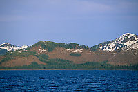 Clear cut logging, Eastern Prince William Sound, Alaska