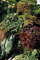Asie/Inde/Maharashtra/Bombay: Colaba Market - Herbes