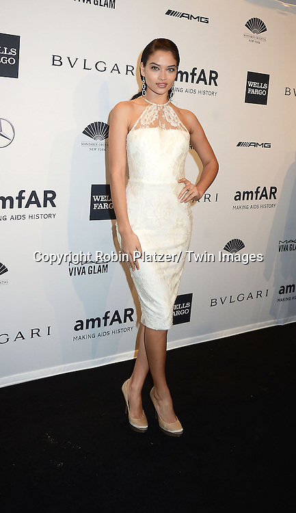 attends the amfAR New York Gala on February 5, 2014 at Cipriani Wall Street in New York City.