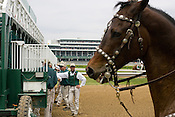The Churchill Downs start crew awaits the race horses (pony leading in front). Start crews work seasonally and are busy during Triple Crown season which includes the Kentucky Derby at Churchill Downs in Louisville, Kentucky.