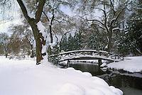 Stanley Park, Vancouver, BC, British Columbia, Canada - Snow Covered Landscape, Bridge over Creek, Winter