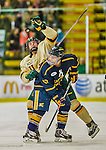 29 December 2013:  University of Vermont Catamount Forward Brady Shaw, a Freshman from Ottawa, Ontario, knocks down a puck during second period action against the Canisius College Golden Griffins at Gutterson Fieldhouse in Burlington, Vermont. The Catamounts defeated the Golden Griffins 6-2 to capture the 2013 Sheraton/TD Bank Catamount Cup NCAA Hockey Tournament for the second straight year. Mandatory Credit: Ed Wolfstein Photo *** RAW (NEF) Image File Available ***