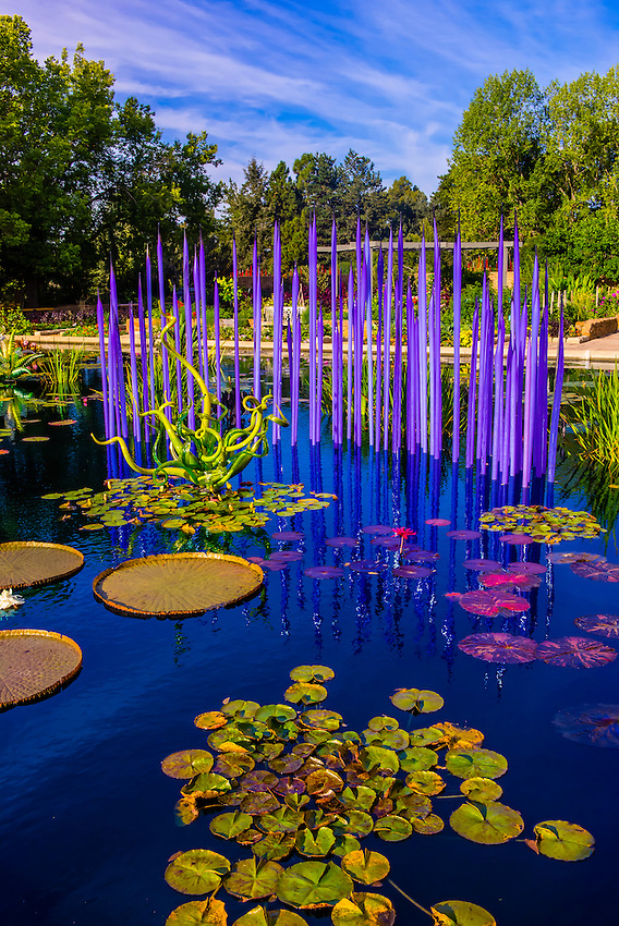 Monet Pool Fiori Monet Pool Dale Chihuly Exhibition Blown Glass Denver Botanic Gardens