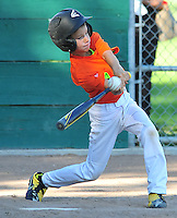 2015 PNLL ACTION