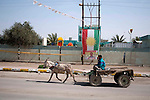 KIRKUK, IRAQ:  A boy drives his donkey and cart past a Kurdish flag...Security is tightened in the volatile Iraqi city of Kirkuk the day before the national elections.  Kirkuk is home to Kurds, Arabs, and Turkmen and has been so violently divided that the city could not participate in the 2005 elections.