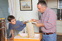 Nicolas Geant, beehive, urban beekeeper, Paris, honey, familly, appartment